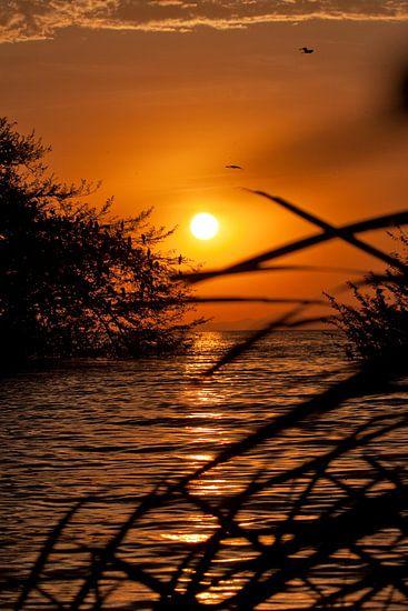 Sunset Victoriameer van Paul Jespers