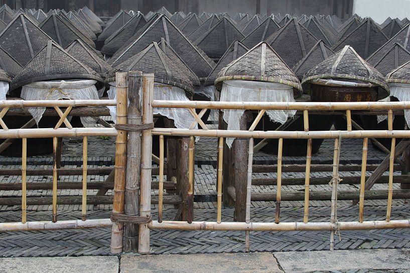 Manden China van Inge Hogenbijl