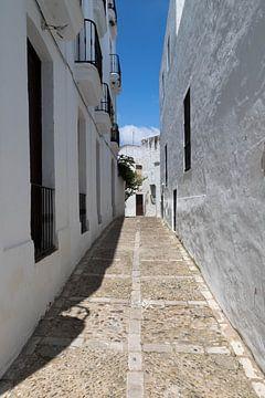 Kleine straat in een wit dorp in Spanje. van Gottfried Carls