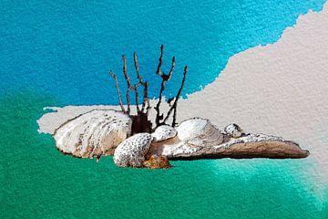 Onderwaterwereld   09 van Dirk H. Wendt