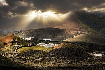 Lanzarote sur Harrie Muis