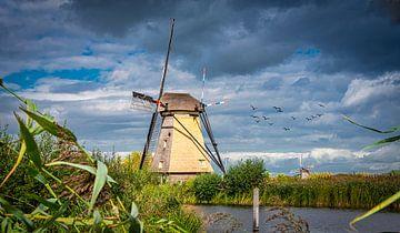 Mühle in Kinderdijk in der Sonne, die Niederlande von Rietje Bulthuis