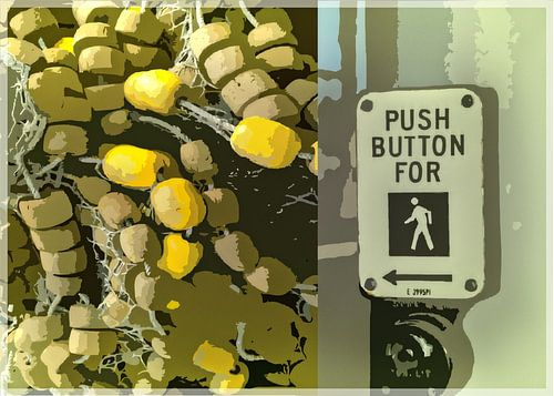 Push Button For Walking van