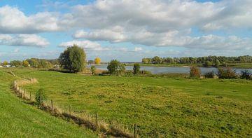 Rivierlandschap van Rinke Velds