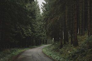 Donkere weg van