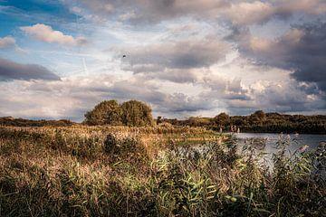 Hollandse luchten boven een vennetje in de duinen. van MICHEL WETTSTEIN