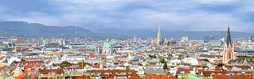 Panorama de Vienne sur Leopold Brix