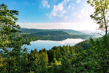Lac dans la lumière du matin