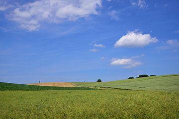 Landschaft mit grünen Hügeln in Bayern von Ulrike Leone