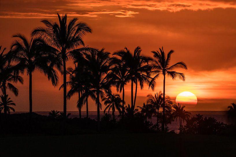Een ongelooflijke zonsondergang in Hawaii van Jim De Sitter