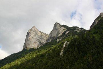 Berg Frankreich von Ruud Wijnands