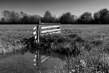 Zaun auf der Wiese von Frank Herrmann