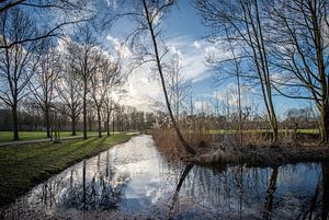 Een kalme winterdag in Landgoed Bredius, Woerden van John Verbruggen