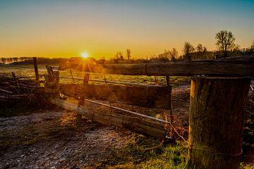 Sonnenaufgang Bieslandse-Polder von Mario Brussé