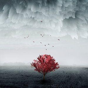 the Red Tree van