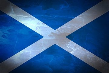 Schotse vlag Saltire van Schotland Saint Andrew's Cross van Mike Maes
