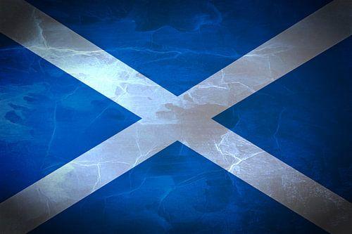 Saltire vlag van Schotland Saint Andrew's Cross van Mike Maes
