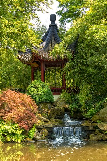 Chinese tuin van Bram van Broekhoven