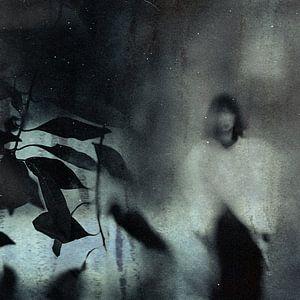 Letztes traurig Porträt ..., Teruhiko Tsuchida