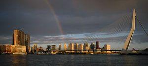 Erasmusbrug en regenboog