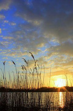 Am Teich van Ostsee Bilder