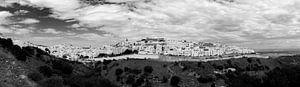 Vejer de la Frontera (zwartwit panorama)
