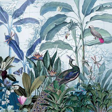 De pauw inspecteert zijn tropisch rijk van christine b-b müller
