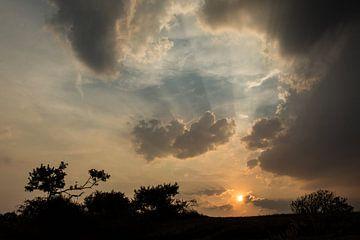 Het regent zonnestralen van Yvonne van der Meij