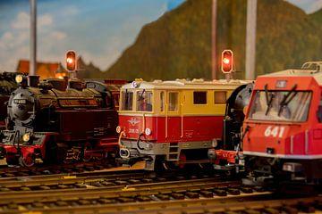 Wereld van model treinen van Marcel Kieffer