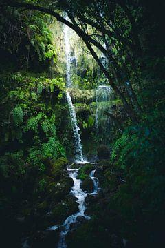 großer Wasserfall im Dschungel von Madeira von jonathan Le Blanc
