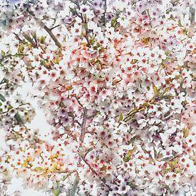 kleurige bloesem van Yvonne Blokland