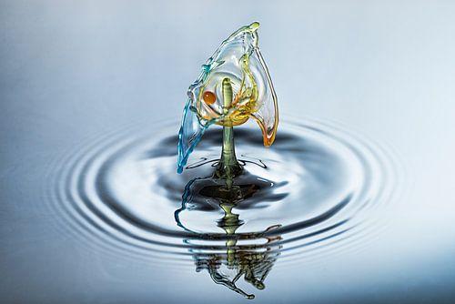 Waterdruppel in drie kleuren van