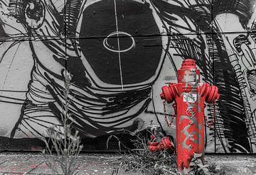 Roter Hydrant von Ans Bastiaanssen