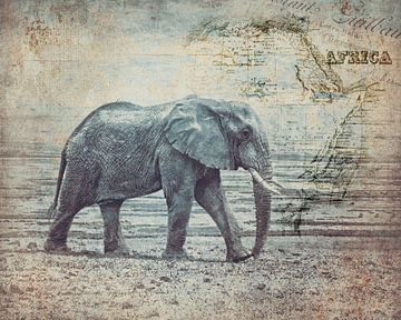 Le voyage de l'éléphant sur Andrea Haase
