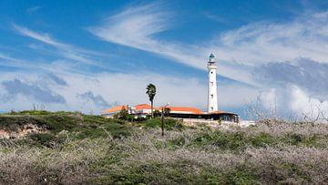 California Lighthouse Aruba von Andre Sonderman