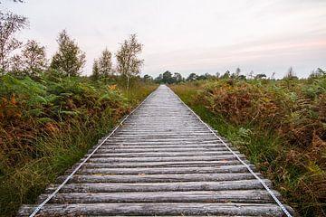 wandelbrug bij natuugebied de grote peel. von Mario Driessen