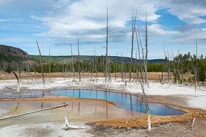 Geiser landschap in Yellowstone NP van