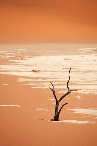 NAMIBIA ... Deadvlei van Meleah Fotografie