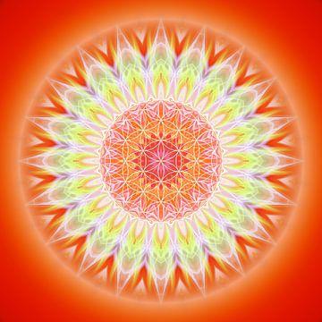 Mandala gezondheid met levensbloem van Christine Bässler
