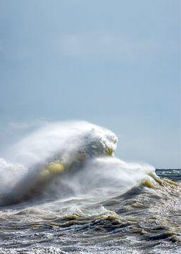 Zee, het Kanaal, Newhaven van Sia Windig