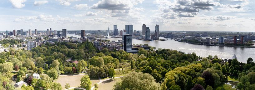 De Erasmusbrug Rotterdam sur Menno Schaefer