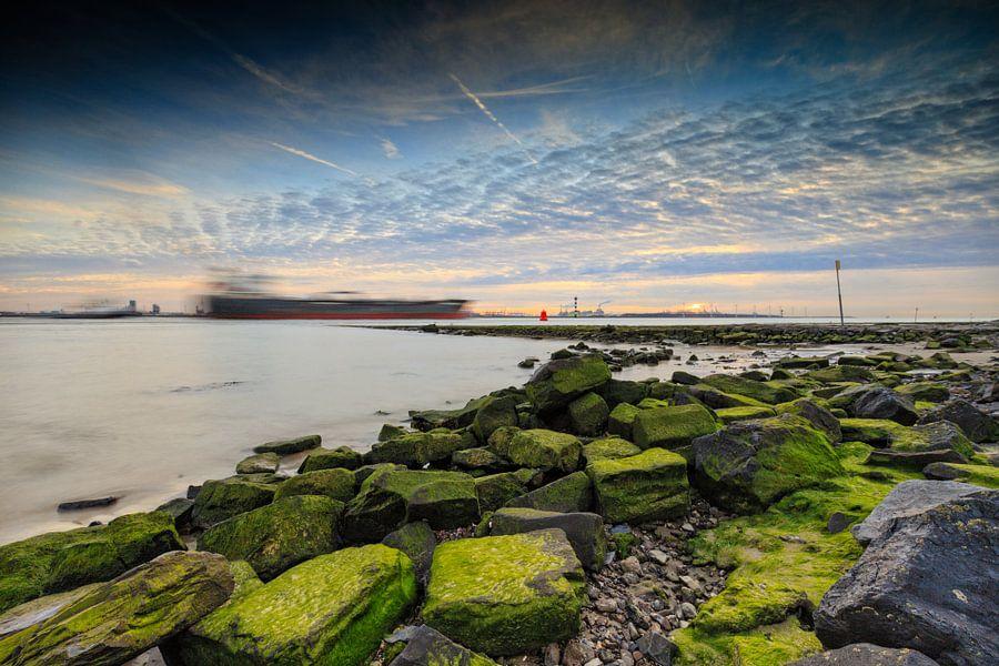 schip over de Nieuwe Waterweg van gaps photography