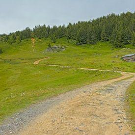 Sentier de montagne dans les Alpes françaises sur Kristof Lauwers