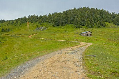 Bergpad in de franse alpen