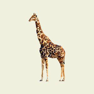 Big Five Safari: Giraffe  van Low Poly