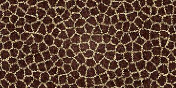 Savanna.jpg von Marion Tenbergen