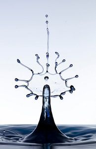Black splash waterdrop von Focco van Eek
