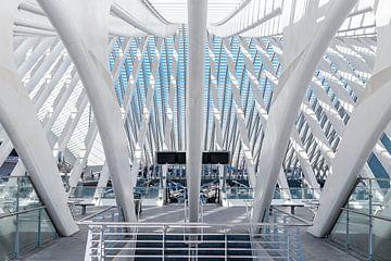 Symmetrie Station Liège-Guillemins von Midi010 Fotografie