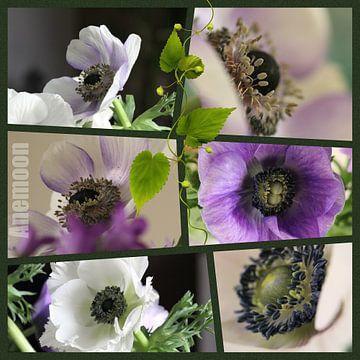 Bloemen collage van Carla van Zomeren