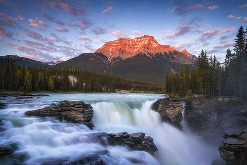 Athabasca Falls Canada van
